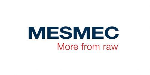 mesmec_logo_4v